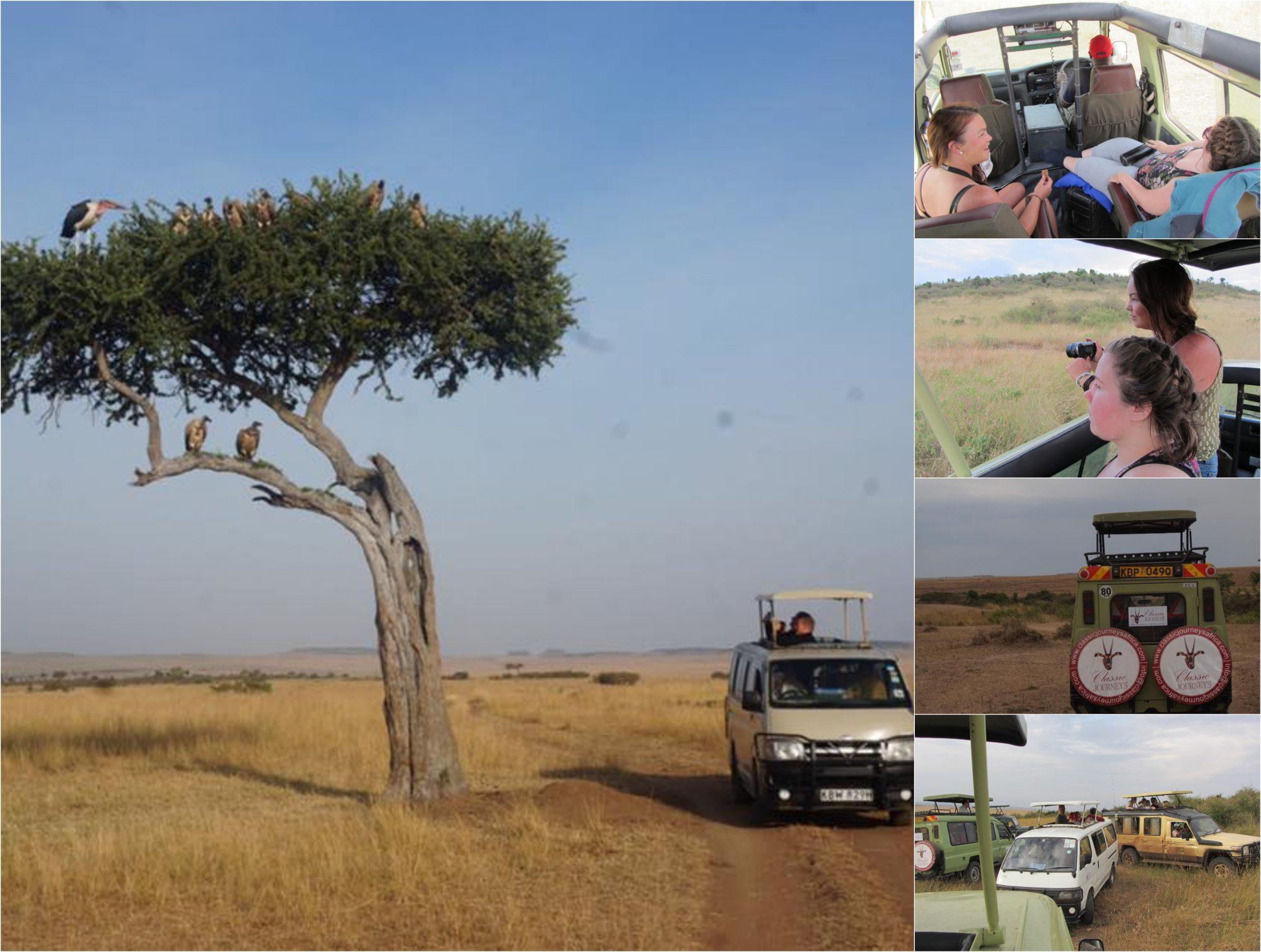 5-delt bildecollage med bilder av safaribilen.