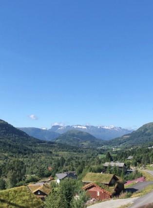 Utsikt fra hovedveranda på hytta i Nordfjordeid: fjell og blå himmel i bakgrunnen. Skog med hyttetak i torv i forgrunnen.